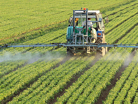 nitrates fertilizer contaminated water